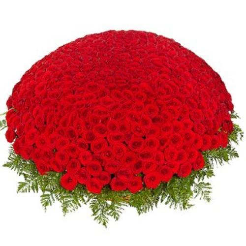 Купить на заказ 301  роза с доставкой в Абае